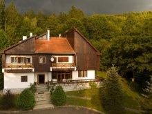 Accommodation Biborțeni, Kormos Residence