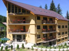 Hotel Târcov, Hotel Meitner