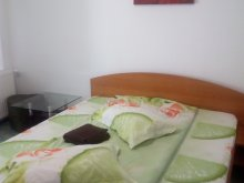 Guesthouse Tulcea county, Daria Guesthouse
