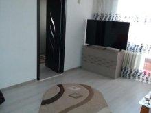 Accommodation Constanța, Ciresica Apartment