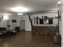 Accommodation Vălenii de Mureș, Ghiță Vacation Home