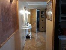 Apartament Rogova, Apartament La Brâncuși Acasă