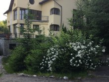 Szállás Kispredeál (Predeluț), Ego Residence Panzió