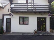 Accommodation Sălcioara, The Eric House