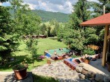 Accommodation Gaiesti, Travelminit Voucher, Hetvezer Guesthouse