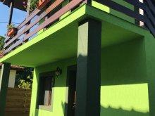 Bed & breakfast Poenari, Green House Inn