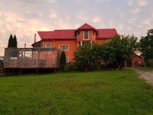 Accommodation Corund, Casa Teo Apartment