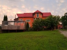 Accommodation Dorna-Arini, Casa Teo Apartment