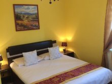 Bed & breakfast Oltenia, Lili Guesthouse