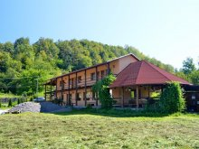 Accommodation Maramureş county, Cornești B&B