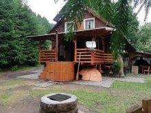 Casă de vacanță Lacul Roșu, Casa Andreea