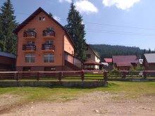 Accommodation Țohești, Andreea Maria Villa