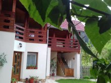 Bed & breakfast Braşov county, Maria B&B