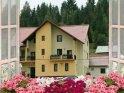 Accommodation Pojorâta Flori de Bucovina B&B