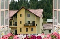Cazare Pojorâta cu Vouchere de vacanță, Pensiunea Flori de Bucovina
