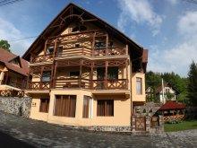 Apartment Romania, Amnesia Guesthouse