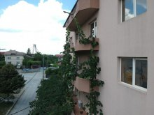 Accommodation Agigea, Eliade Villa