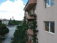 Apartment Potârnichea, Eliade Villa