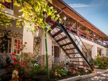 Guesthouse Eforie Sud, Didina Guesthouse