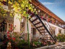 Guesthouse Piatra, Didina Guesthouse