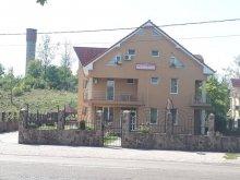 Szállás Biharcsanálos (Cenaloș), Corina Panzió