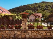 Cabană Piatra Secuiului, Vila Ghiocel