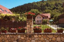 Vacation home near Holy Trinity Monastery, Vila Hóvirág