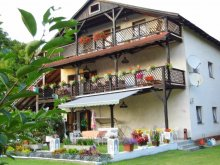 Accommodation Orfű, Villa Negra Guesthouse