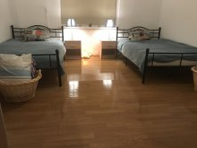 Accommodation Aiud, Nicu Chalet