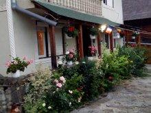 Guesthouse Bistrița Bârgăului Fabrici, Petreuș B&B