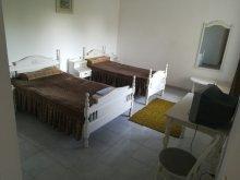 Vilă Sanatoriul Agigea, Vila Andra