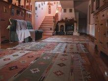 Cazare Drăușeni, Casa de oaspeți Buena Vista