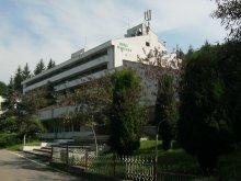 Hotel Pleșcuța, Hotel Moneasa
