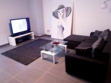 Accommodation Nagybánhegyes, Bréda Apartment
