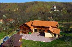 Panzió Alun (Boșorod), Iancu Panzió
