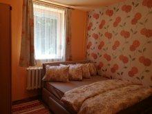 Accommodation Păuleni-Ciuc, Agnes's Place