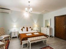 Accommodation Șaeș, Flora Luxury House