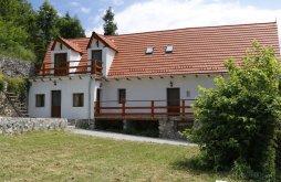 Pensiune Sasca Montană, Nera House