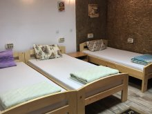 Accommodation Cluj-Napoca, Casa Roz Hostel