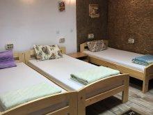 Hostel Bichigiu, Casa Roz Hostel