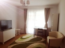 Accommodation Băgara, 3-in-1 Cozy Studio