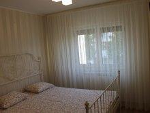 Apartament Știețești, Apartament Salina