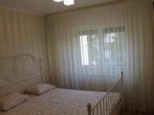 Cazare Sârbi, Apartament Salina