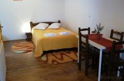 Accommodation Kalotaszegi hegyvidék, Iris Guesthouse
