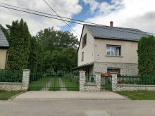 Casă de oaspeți Mezőcsát, Casa de oaspeți Farkas Piroska
