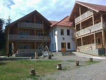 Accommodation Dorna-Arini, Casa din Vis B&B