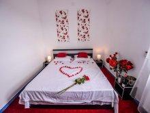 Apartment Râmnicu de Jos, Tito Guesthouse