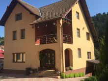 Villa Runcu, Casa de Vis Villa