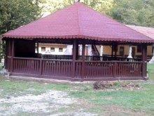 Accommodation Slatina de Criș, Ozon B&B