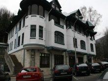 Accommodation Zărneștii de Slănic, Hotel Tantzi